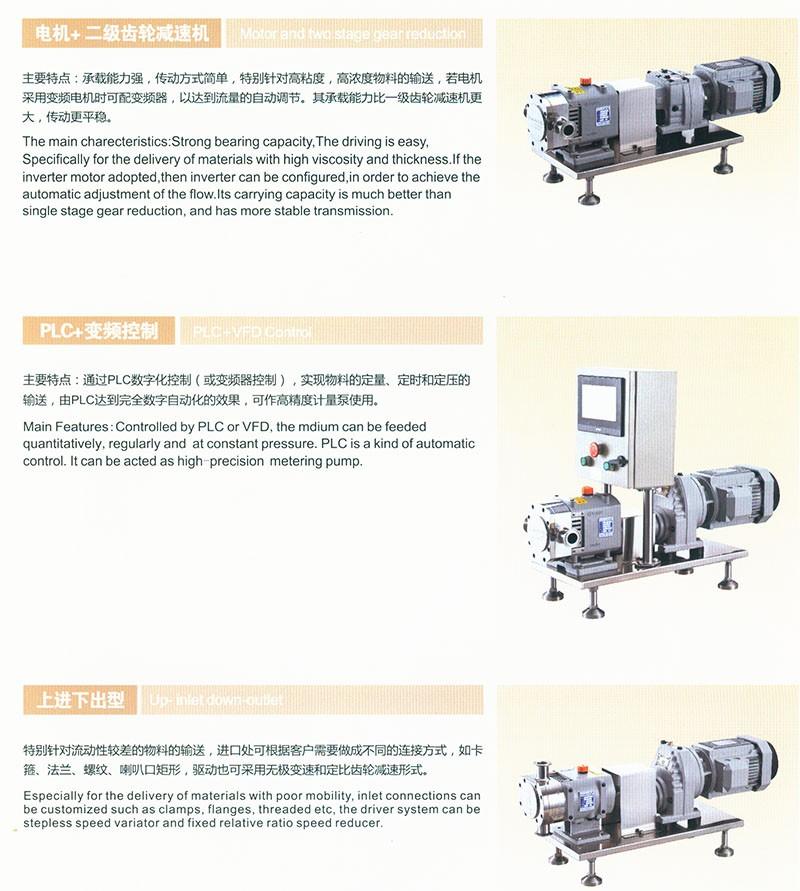 转子泵驱动配置