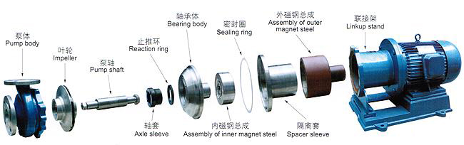 磁力泵解剖图