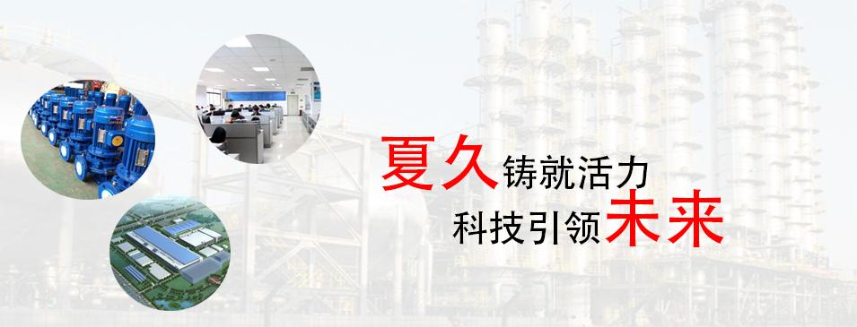 四川磁力泵